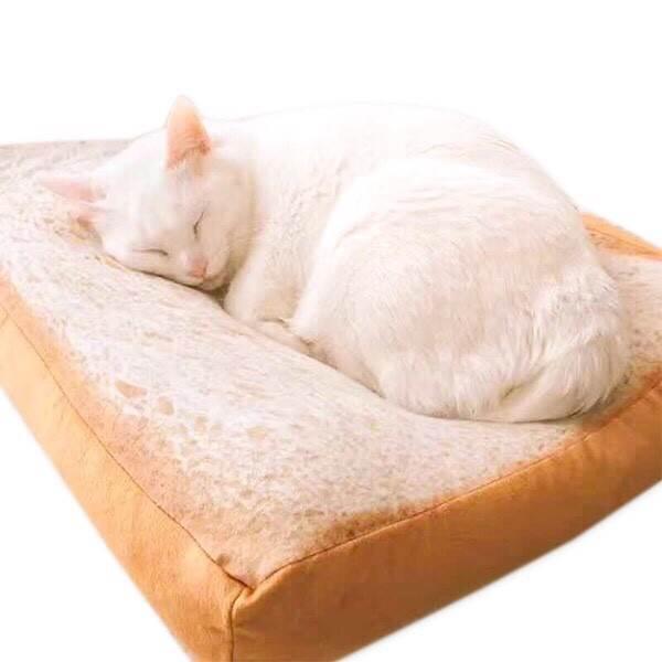 ที่นอนหนมปัง สำหรับสัตว์เลี้ยง