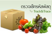 จำหน่ายเมล็ดผักสลัด เมล็ดผักไทย เมล็ดดอกไม้ อุปกรณ์ปลูกผักไฮโดรโปนิกส์ ปลูกผักปลอดสารพิษ ปุ๋ยชีวภาพ ข้อมูลติดต่อร้าน LINE ID : @hydroboxs Instagram : hydroboxs Tel : 088-211-5290 ติดต่อ 24 ชั่วโมง ผักสด ปลูกเอง สะอาด อร่อย ไม่มีสารพิษ ขายดี สุขภาพดี ผักสุขภาพ