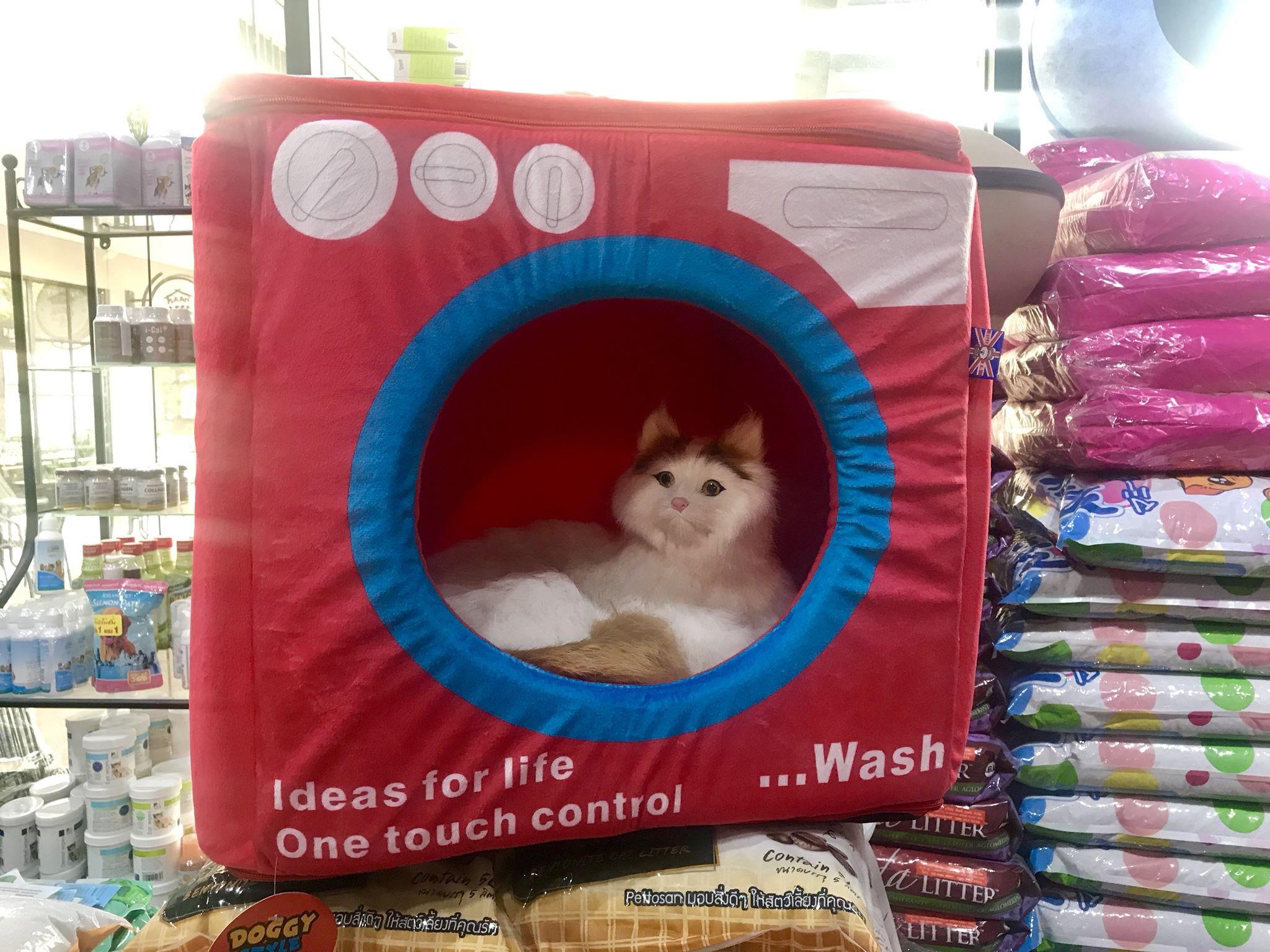 ที่นอนอุโมงค์เครื่องซักผ้า สำหรับสัตว์เลี้ยง