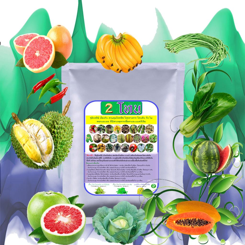 2โทน จุลินทรีย์ป้องกัน ควบคุมโรคพืชทุกชนิด