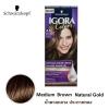 Schwarzkopf IGORA Colors อีโกร่า อินเทนซีฟ คัลเลอร์ ครีม 4-5 Medium Brown Natural Gold น้ำตาลกลางประกายทอง