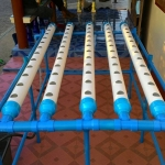 ชุดปลูกผักไร้ดิน 60 ช่องปลูก ระบบDRFT