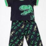 Carter's : ชุดเสื้อ สกรีนลายไดโนเสาร์ สีดำ + กางเกงพิมพ์ลายไดโนเสาร์ size 12m