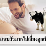 คนท้องกินนมวัวมากไปเสี่ยงลูกเป็นภูมิแพ้