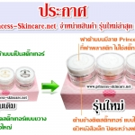 Princess Skin Care