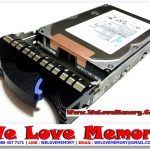 43W9720 IBM 750GB 7.2K RPM SATA-2 EV-DDM HS W/TRAY HDD