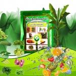 เชื้อราไตรโคเดอร์มา(ชนิดผงแห้ง)ชีวภัณฑ์ป้องกันโรคพืช
