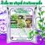 หัวเชื้อแบคทีเรีย บาซิลลัส ซับทีลิส บริสุทธิ์ ป้องกันกำจัดโรคพืช thumbnail 1