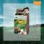 โลแลน เนเจอร์ โค้ด คัลเลอร์ แชมพู ปราศจากแอมโมเนีย N7 สีน้ำตาลกาแฟ Coffee Brown โทนสีธรรมชาติ ปิดผมขาว thumbnail 1