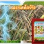 หัวเชื้อแบคทีเรีย บาซิลลัส โปร กำจัด ทำลายโรคพืช thumbnail 5
