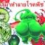 หัวเชื้อราไตรโคเดอร์มา บริสุทธิ์ สำหรับขยายเชื้อ ป้องกันโรคพืช thumbnail 5