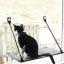 เปลแมว ติดกระจก thumbnail 1