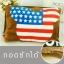 พร้อมส่ง กระเป๋าน้ำร้อนไฟฟ้า ถุงน้ำร้อนไฟฟ้า Mickey mouse USA flag ถอดซักได้ thumbnail 1