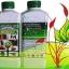 เชื้อราไตรโคเดอร์มา ชนิดน้ำ ป้องกันโรคพืช thumbnail 1