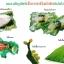 หัวเชื้อรา พาซิโลมัยซิส บริสุทธิ์ สำหรับขยายเชื้อ กำจัดไข่แมลง thumbnail 4