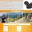 รองเท้าจักรยานเสือภูเขา FLR รุ่น F-55 thumbnail 11