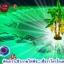 เชื้อราไตรโคเดอร์มา ชนิดน้ำ ป้องกันโรคพืช thumbnail 7