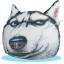 พร้อมส่ง กระเป๋าน้ำร้อนไฟฟ้า ถุงน้ำร้อนไฟฟ้า น้องหมาไซบีเรียนฮัสกี Siberian Huskyถอดซักได้ thumbnail 1