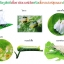 เชื้อราบิวเวอร์เรีย ชนิดน้ำ กำจัดแมลงศัตรูพืช thumbnail 7