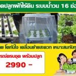 ชุดปลูกผักไร้ดินระบบน้ำวน 16 ช่องปลูก