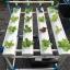 ชุดปลูกผักไร้ดิน 20 ช่องปลูก thumbnail 4