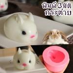 พิมพ์ 3 มิติ กระต่าย B696
